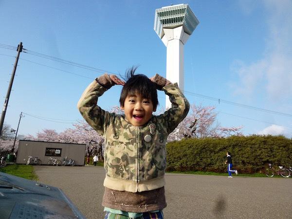 水鏡に映る 早朝の五稜郭の桜の花