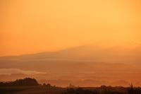 美瑛の丘めぐり・朝日を浴びる丘(15/08/14)