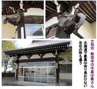 士別市 教信寺の象さん