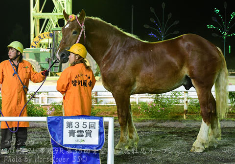 第35回青雲賞2歳牡馬オープン