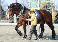 とかちマッシュ杯 第35回ポプラ賞(BG3)