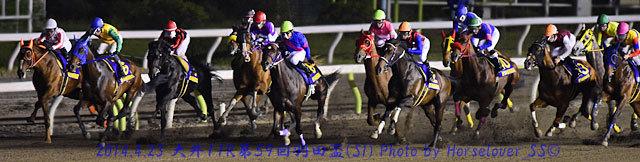 第59回羽田盃(SI) レース写真