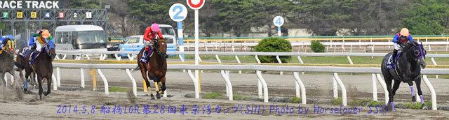 パカパカパーティ 第28回東京湾カップ(SIII)