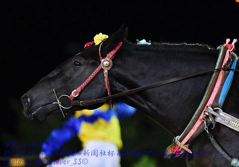 報知新聞社杯第27回いちい賞2歳牝馬オープン