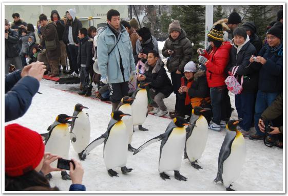 旭山動物園に行ってみた