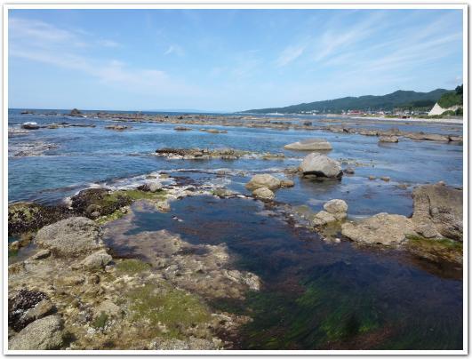 鮎川海岸で磯遊びをしてみた