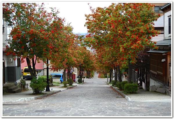 函館元町に訪れた紅葉を眺めてみた