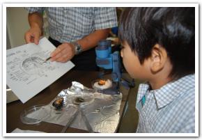 溢れる科学「青少年のための科学の祭典」 2