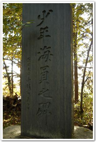函館護国神社から見下ろす函館の町