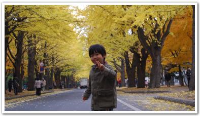 紅葉の名所「北海道大学」に行ってみた