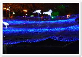 札幌市「ホワイトイルミネーション」に行ってみた