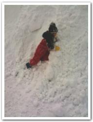 「過酷な冬の北海道」で遊んでみた