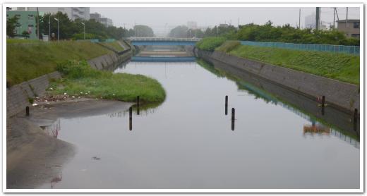 亀田川の歴史散策に行ってみた