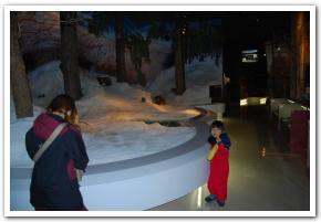 「北国博物館」に行ってみた