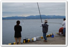 サバを求めて「函館港町埠頭」へ行ってみた