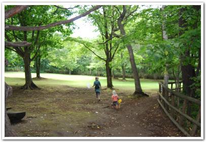 「西岡水源地公園」に行ってみた