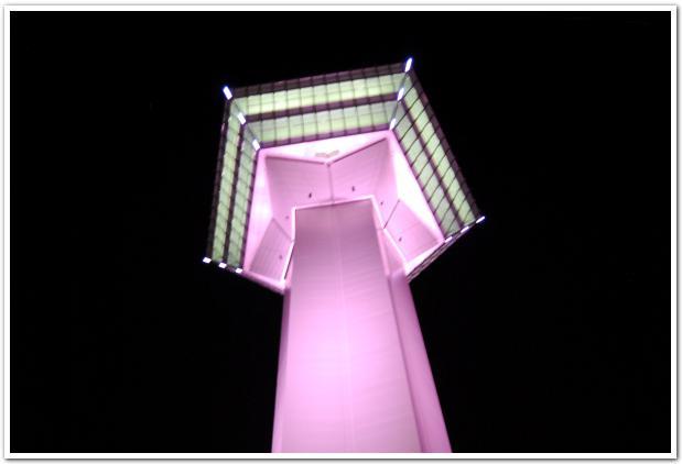 ピンクの五稜郭タワーと月夜の五稜郭
