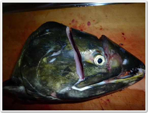 鮭の頭を輪切りにして「氷頭」と「腎臓」を調理した
