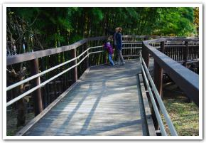 鮮やかな紅葉に彩られた、北海道初の洋式石橋