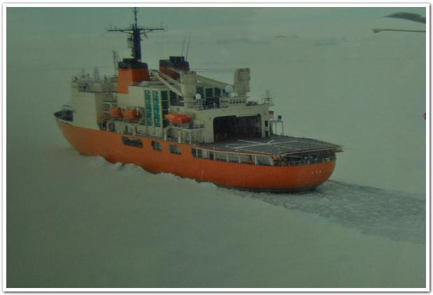 迫力の氷砕船「しらせ」見学会と悲運の冒険家