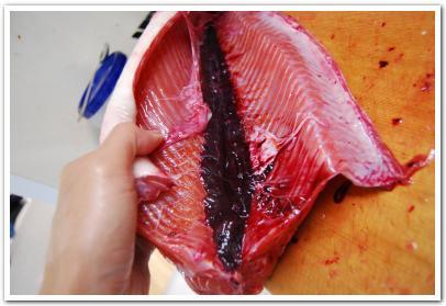 鮭のレバーペーストに舌鼓を打ってみた