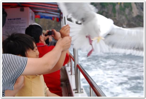 観光船から眺める 極上の【積丹ブルー】に感動!