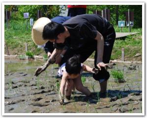 えこりん村の「田植え体験」に行ってみた