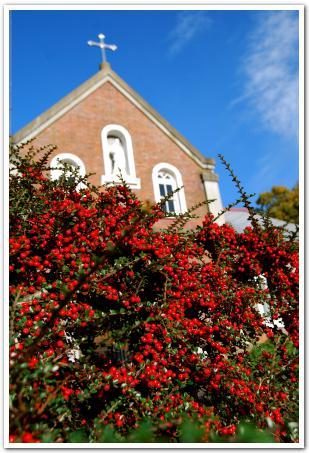 祈る 働く 秋色に輝くトラピスト修道院