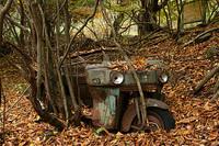 奥多摩の紅葉・山のふるさと村(08/11/15) 2008/12/08 21:40:33