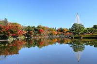 秋の昭和記念公園(08/11/22) 2008/12/13 20:34:30