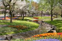 昭和記念公園の春(09/04/11) 2009/04/12 19:23:54