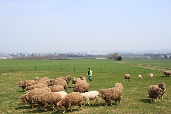 ... けいメモBlog:羊ヶ丘展望台