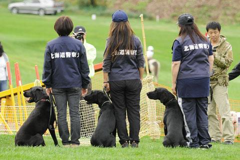 札幌で動物愛護フェスティバル開催