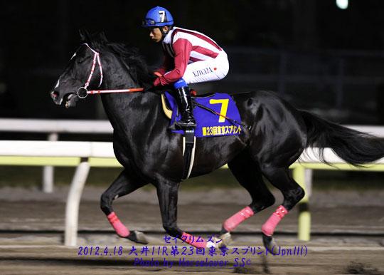 第23回東京スプリント(JpnIII)優勝 セイクリムズン