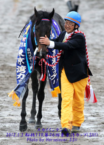 第26回東京湾カップ(SIII)優勝 スカイインテンス