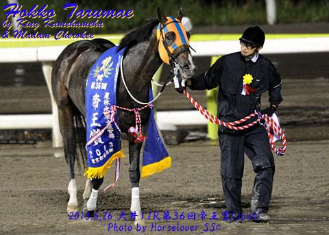 ホッコータルマエ 第36回帝王賞(JpnI)優勝