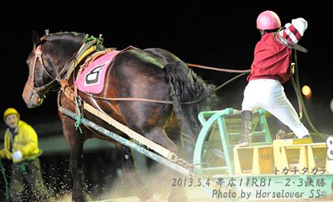 馬に噛まれて松田騎手負傷 乗り替りの島津新騎手