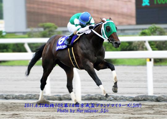 第14回京成盃グランドマイラーズ(S3) ディアーウィッシュ