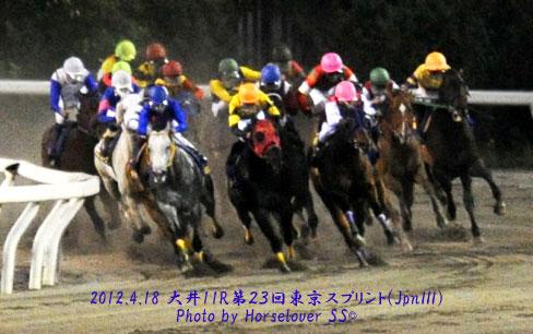 第23回東京スプリント(JpnIII) レース写真