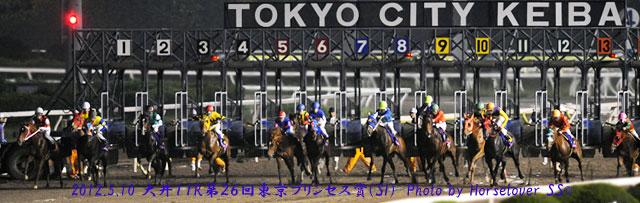 第26回東京プリンセス賞(SI) レース写真