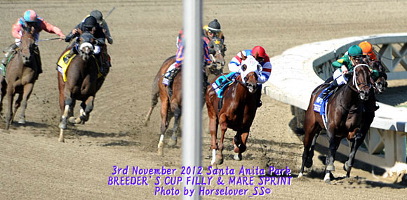 BC 2012 FILLY & MARE SPRINT