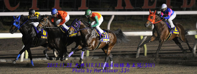第4回勝島王冠(SIII) レース写真