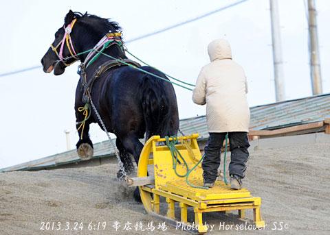 カネサブラック 第45回ばんえい記念(BGI)優勝~恋の季節
