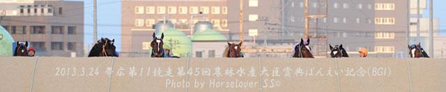 第45回農林水産大臣賞典ばんえい記念(BGI)