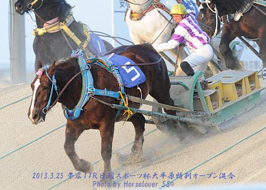 ユーファンタジー 日刊スポーツ杯大平原特別