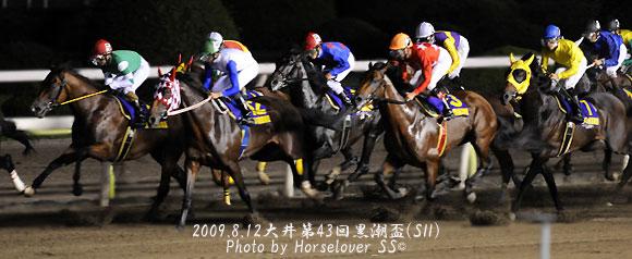 第43回黒潮盃(SII) - レース写真