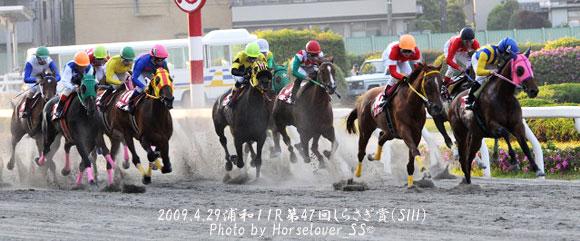 第48回しらさぎ賞(SIII) - レース写真