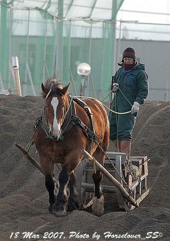 ばんえい競馬 - 障害調教