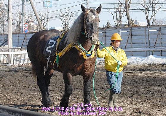 ニシキユウ - 2007年3月17日