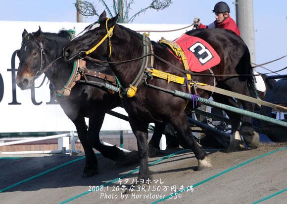 牝馬で連勝(*^.^*) ダークホース?